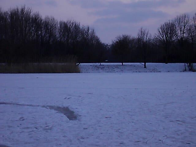 Leipzig-Lößnig - Blick über den Silbersee - Foto by Henning Uhle