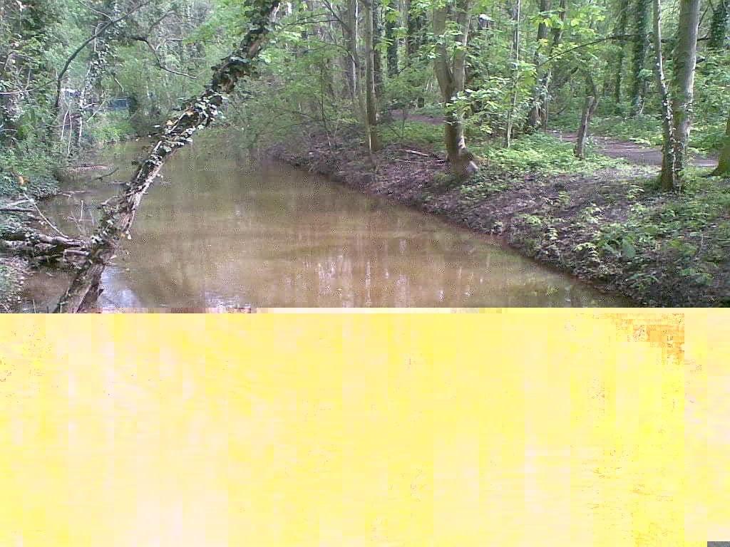 Und immer wieder Gewässer, wie hier der Pleißemühlgraben - (C) Henning Uhle