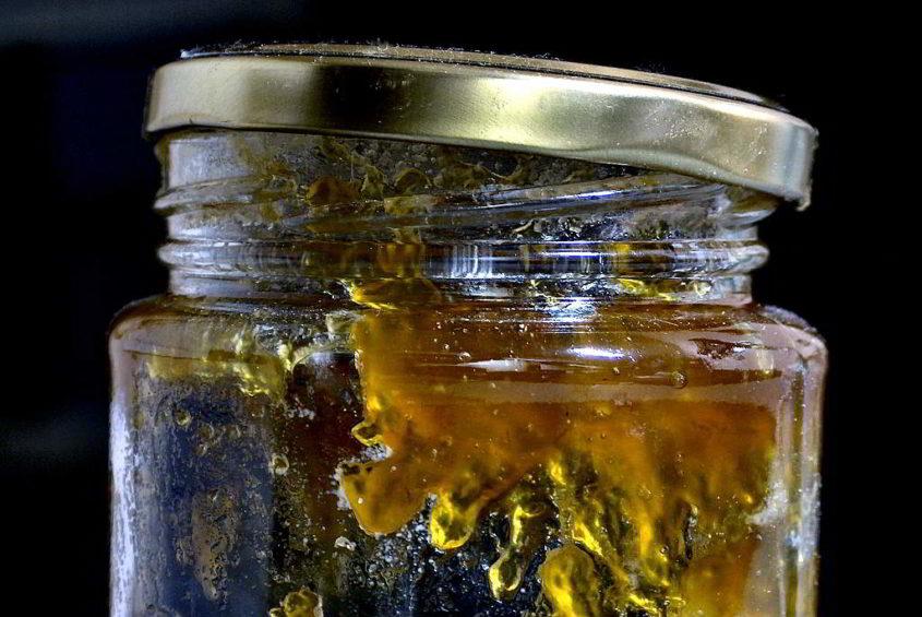 Marmeladenpampe - Free Photo from Moguefile.com