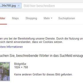 Screenshot aus der Google-Bildersuche - (C) Henning Uhle