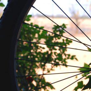 Fahrrad-Speichen - free picture by cohdra via morguefile.com
