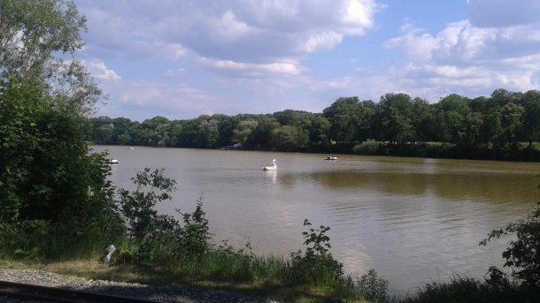 Sommer am Auensee zu Leipzig - Henning Uhle