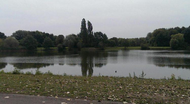 Der Silbersee vom Nordufer aus - Henning Uhle