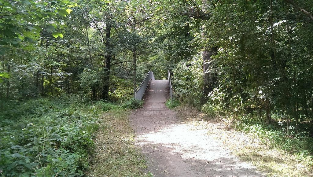 Brücke über die Pleiße im südlichen Auwald - Henning Uhle