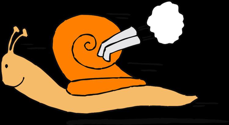 Turboschnecke - (C) Nemo CC0 via Pixabay.de