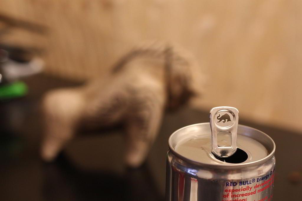 Red Bull - (C) bohed CC0 via Pixabay.de