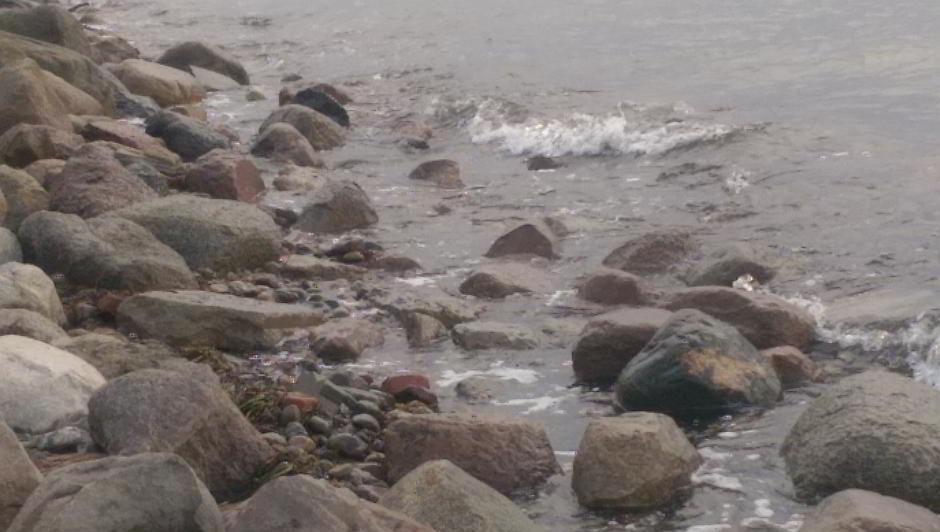 Die Gesteinsküste von Kägsdorf mit Wellen