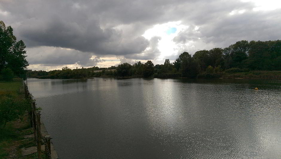 Die Natur holt sich den Hafen Lindenau zurück