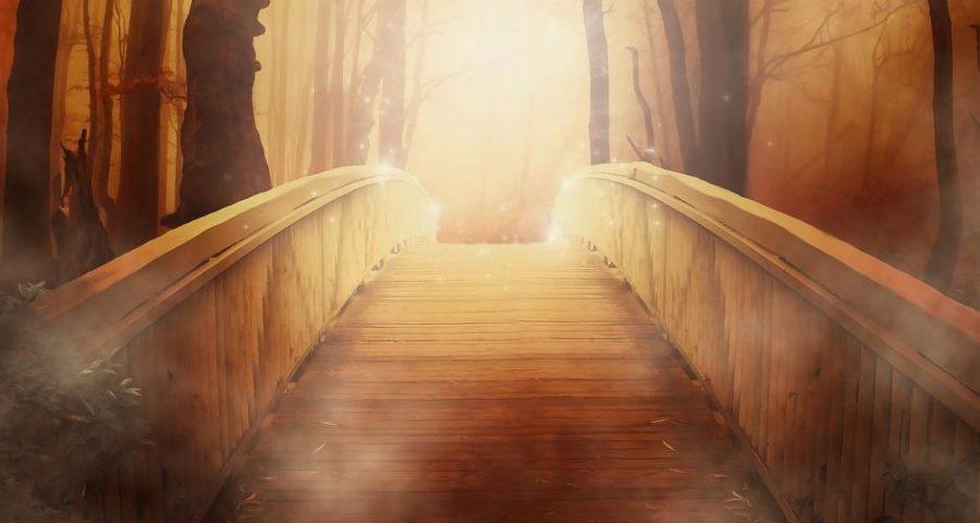 Eine Brücke ins Licht - (C) Larisa_K CC0 via Pixabay.de