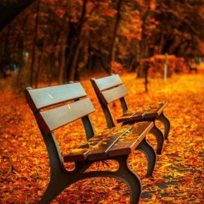 Relaxen auf der Bank - (C) Taken CC0 via Pixabay.de
