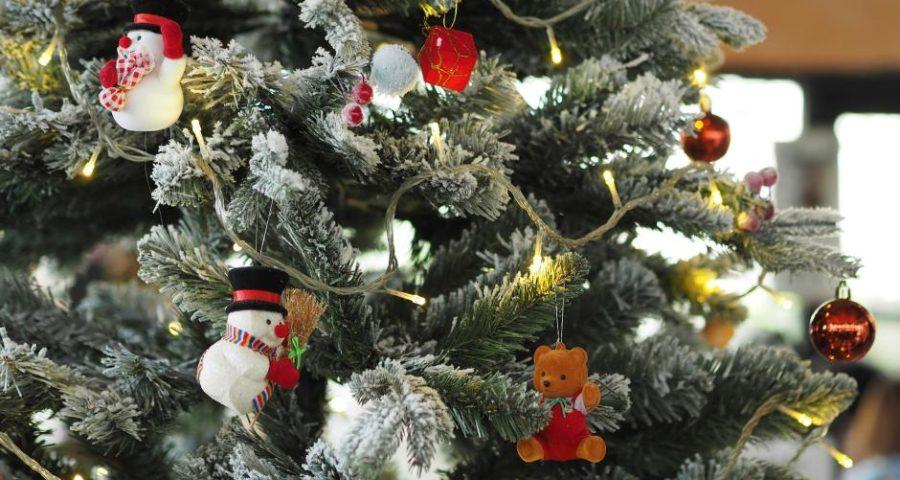 Weihnachtsbaum - (C) eak_kkk CC0 via Pixabay.de