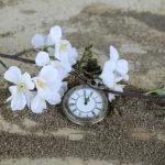 """Längst vergessen: """"Time flies"""" von Vaya Con Dios"""