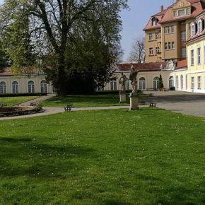 Gohlis - Rosental - Innenstadt: Frühling mitten in Leipzig
