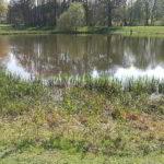 Leipzig: Angriffe auf Joggerinnen im Rosental