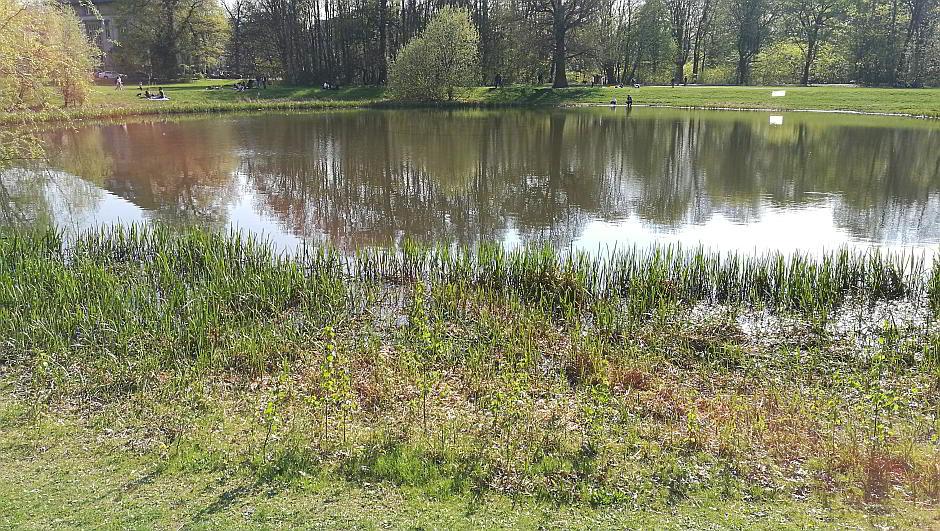 Teich im Rosental