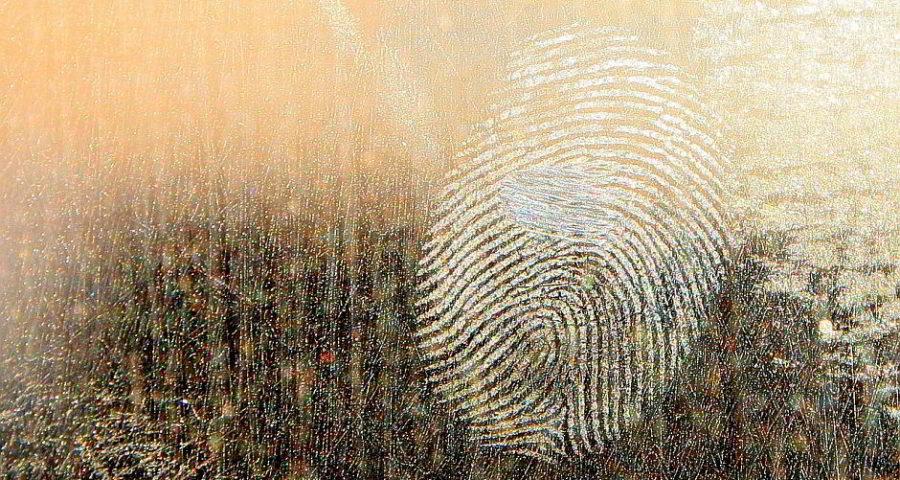 Fingerabdruck - (C) byrev CC0 via Pixabay.de