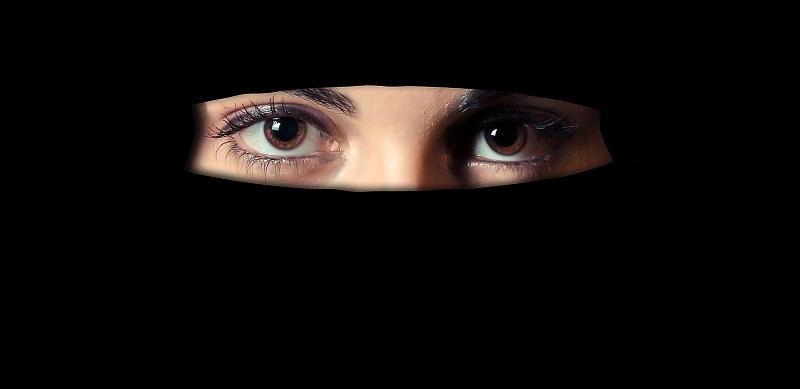 Niqab - (C) Geralt Altmann CC0 via Pixabay.de