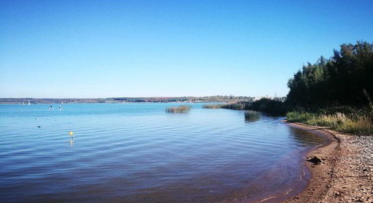 Ufer des Sees bei Gruna