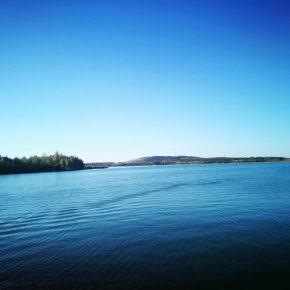 Blick über den See in Richtung Auenhain / Güldengossa
