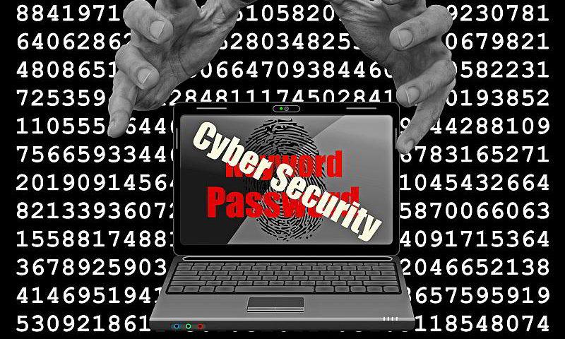 Ein Kryptotrojaner - (C) cocoparisienne CC0 via Pixabay.de