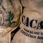 Nachhaltigkeit: Schokolade mit Fair Trade Kakao