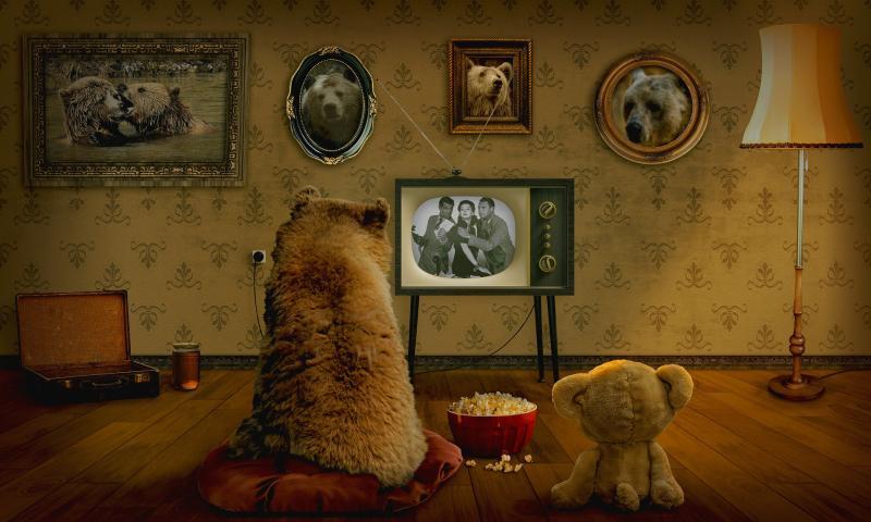 Privatfernsehen - (C) Papafox CC0 via Pixabay.com - https://pixabay.com/de/b%C3%A4r-teddy-fernsehen-gem%C3%BCtlichkeit-3145874/
