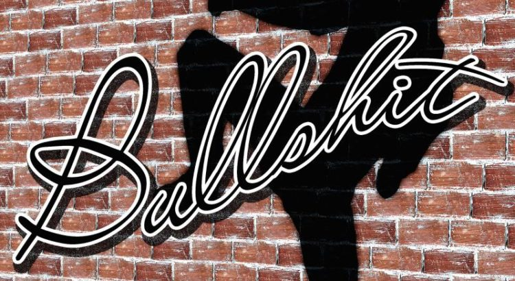 Bullshit - (C) Geralt Altmann CC0 via Pixabay.com - https://pixabay.com/de/mauer-schatten-mann-silhouette-483011/