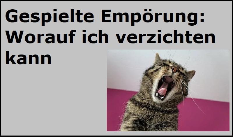 Gespielte Empörung: Worauf ich verzichten kann - (C) photosforyou - Pixabay-Lizenz - via Pixabay.com