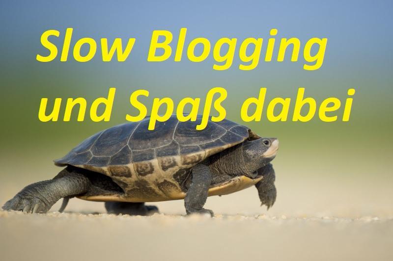 Slow Blogging und Spaß dabei - Bild von Pexels auf Pixabay