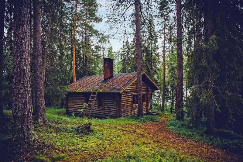 """35 Jahre """"Take me Home"""" von Phil Collins - Bild von David Mark auf Pixabay"""