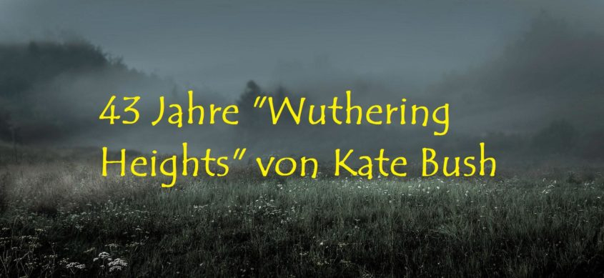 """43 Jahre """"Wuthering Heights"""" von Kate Bush - Bild von grubertransmedia auf Pixabay"""
